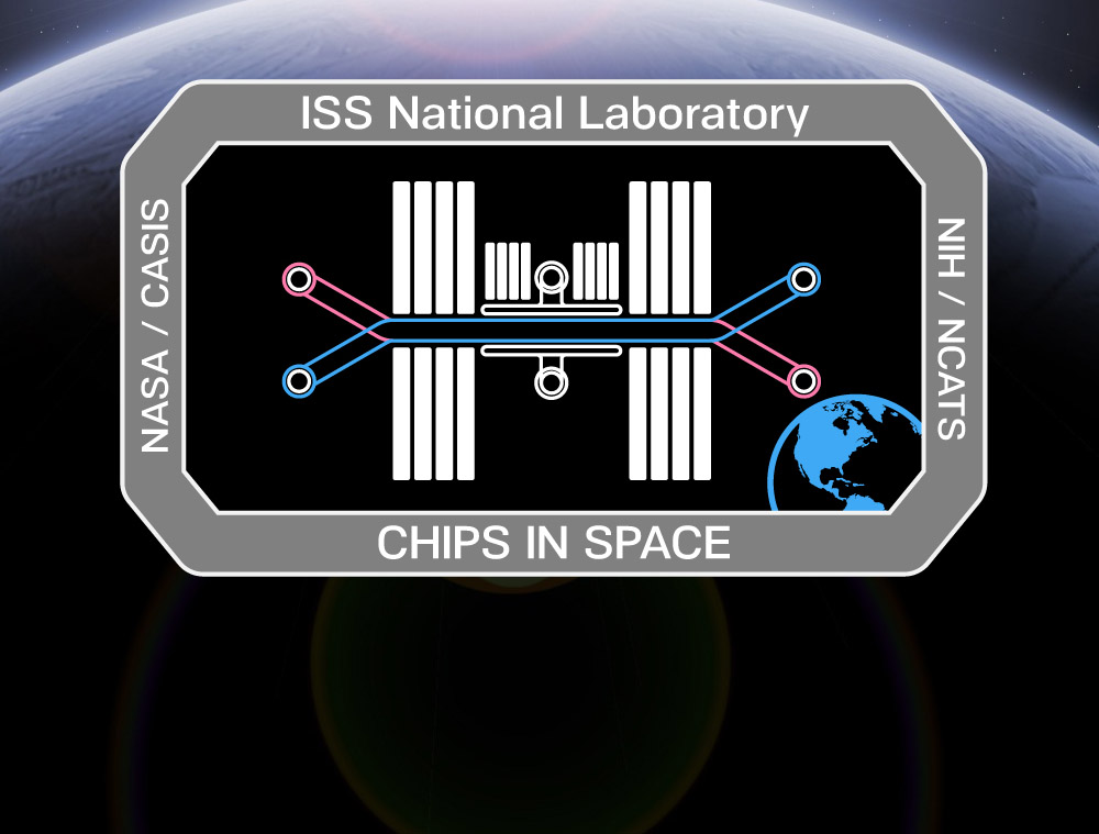 Ezra Chips in Space patch rectangle