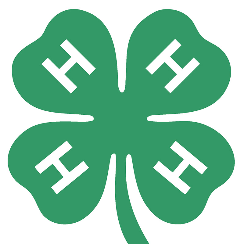 4 H logo white square