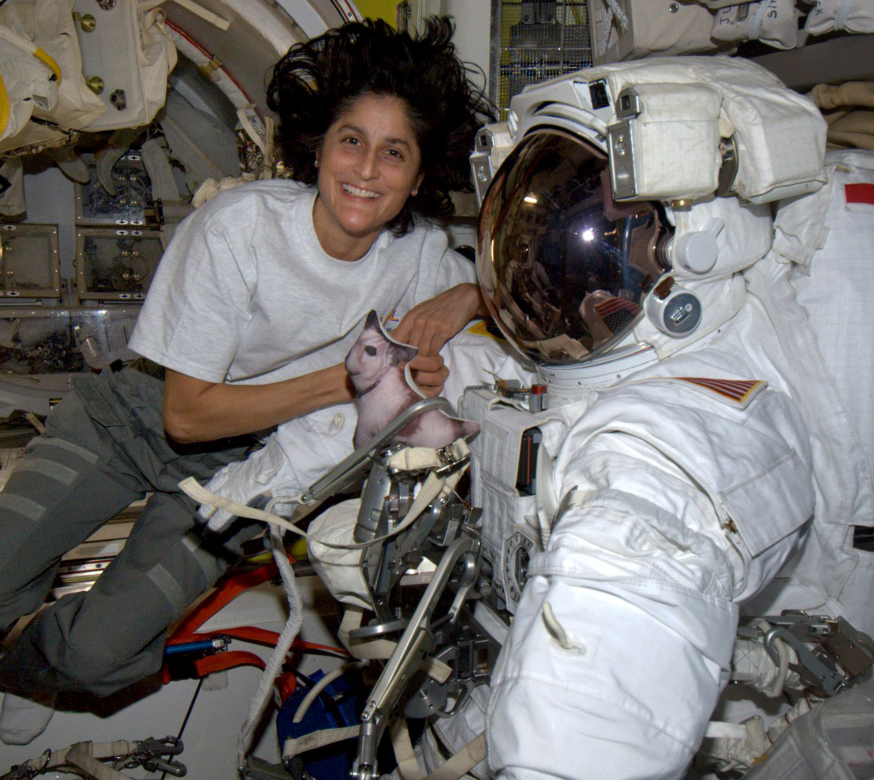 suni williams spacesuit weirddogpillow